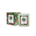 Candela tè verde - 65292128bebd34ae -